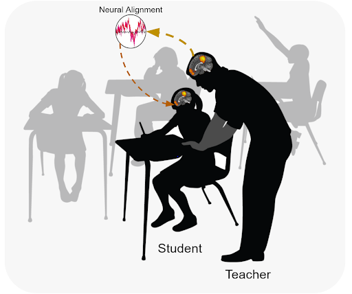 Alignment of brain activity leads to increased learning in the classroom